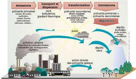Pluies acides. © Site de l'Association pour la Surveillance et l'étude de la Pollution Atmosphérique en Alsace