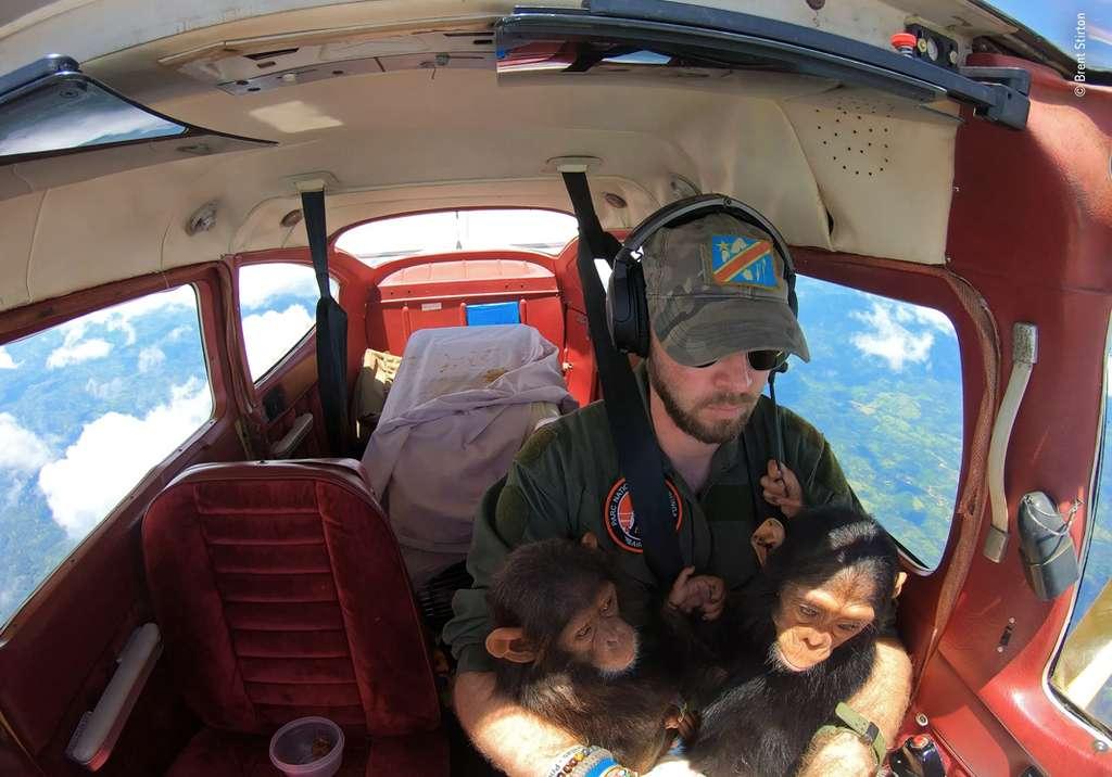 Peu importe où nous vivons, les choix que nous faisons chaque jour ont un effet sur le monde naturel. Comme le montre ce «Sauvetage dans les airs». © Brent Stirton, Wildlife Photographer of the Year
