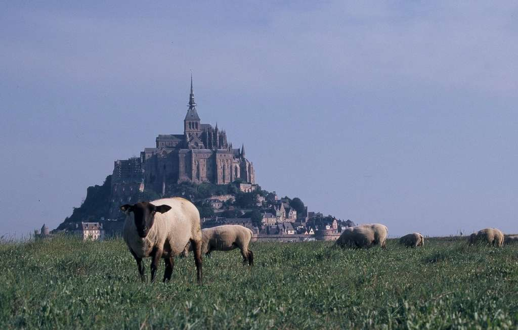 Le mont Saint-Michel fait partie des sites touristiques français les plus fréquentés. © Jean-Baptiste Feldmann