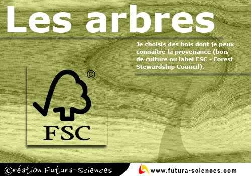 Bois label FSC