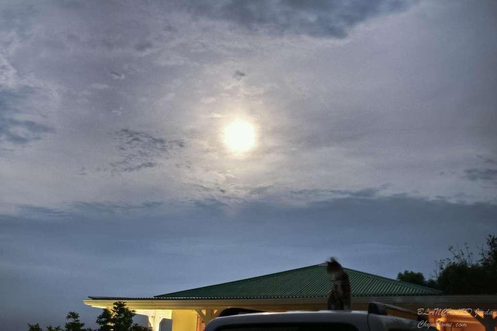 Même les chats ont suivi le lever d'une grosse Pleine Lune avec intérêt. © Jordan Blanchard