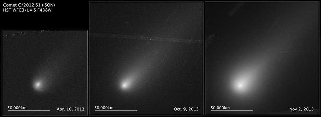 Ison photographiée par Hubble au fil des mois. © Esa, Nasa