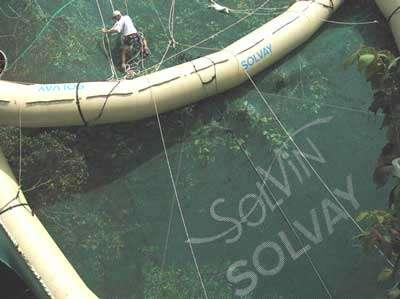 Solvin-Bretzel - Copyright Projet Ibisca - Tous droits réservés