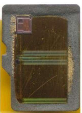 Cette carte mémoire SD a été ouverte pour révéler le microcontrôleur placé dans le coin supérieur gauche. C'est lui qui exécute les algorithmes de correction d'erreur qui permettent de garantir l'intégrité des données stockées sur la mémoire flash. © Bunniestudios