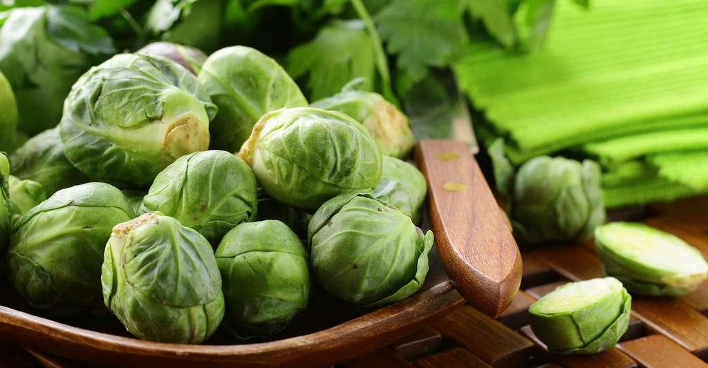 Les choux de Bruxelles sont riches en vitamine. © Dream79, Shutterstock