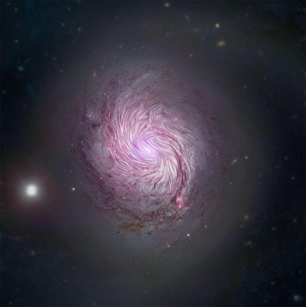 Sur cette image sont représentées les lignes de champs magnétiques superposées à une composition en lumière visible et rayons X de la galaxie spirale MGC 1068. Les champs magnétiques s'alignent sur les bras spiraux sur toute leur longueur. © Nasa, Sofia, JPL-Caltech, Roma Tre Univ.