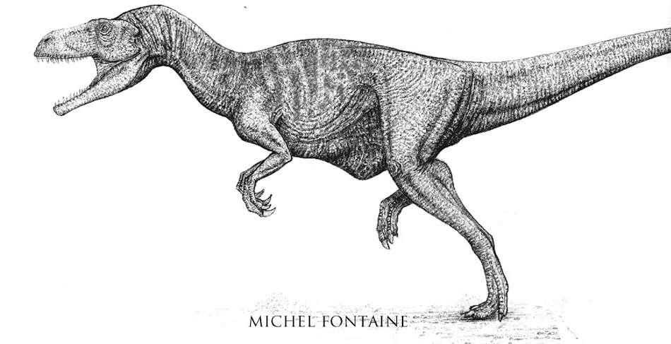 La reconstitution complète du dinosaure en dessin. © Michel Fontaine