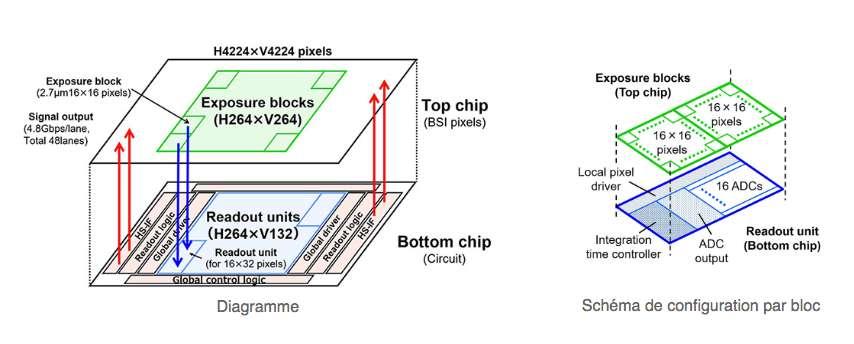 Schéma de configuration de la puce supérieure et de la puce inférieure.© Nikon