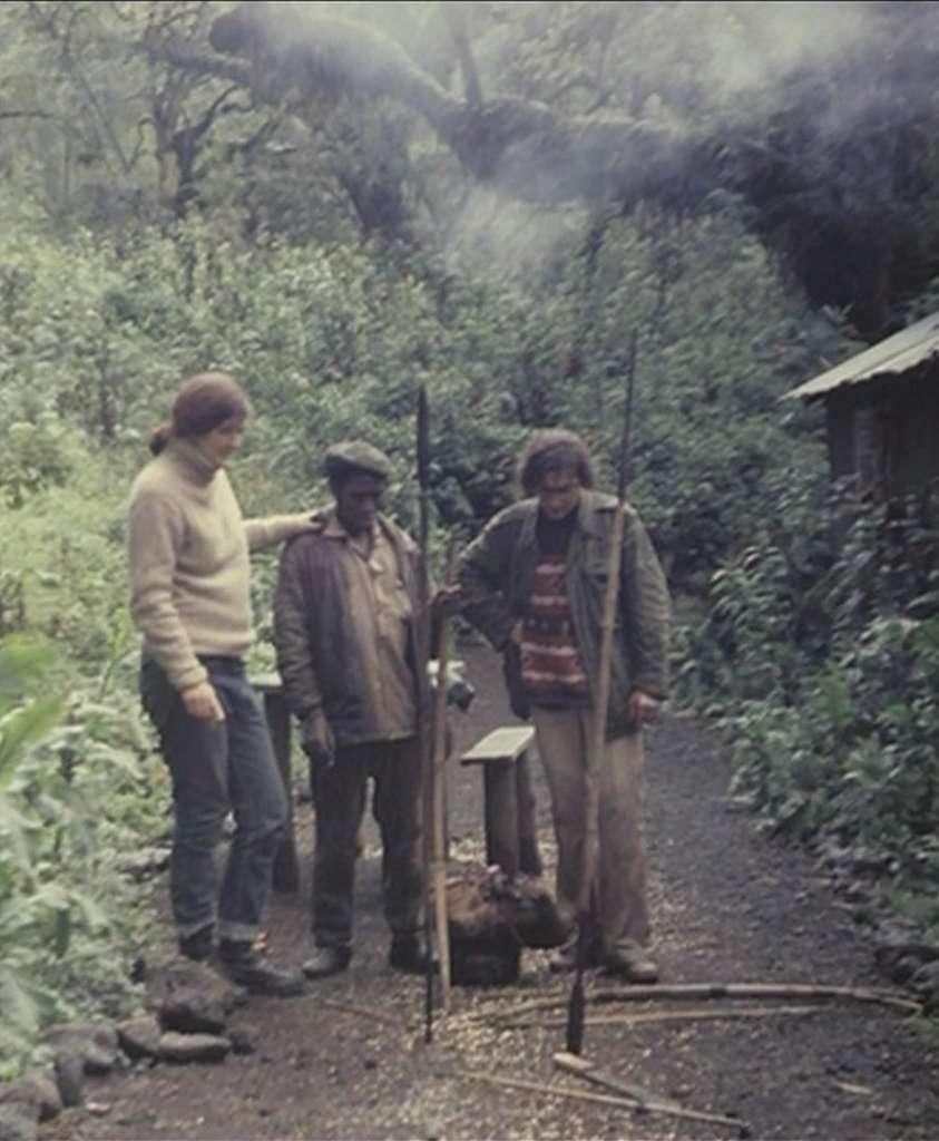 Dian Fossey et André Lucas en 1976 dans le parc national des Volcans, au Rwanda. © Frontview Production, MFP (image extraite du film)