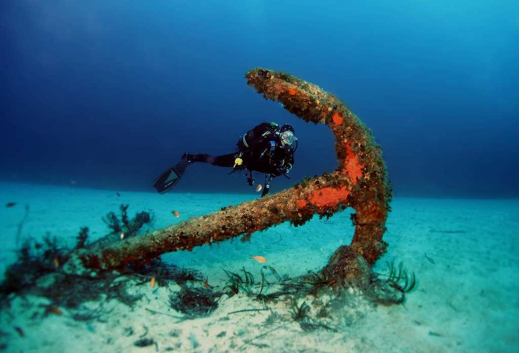 Les fonds marins regorgent de surprises. Ici, l'ancre du remorqueur Rozi. © David, Fotolia