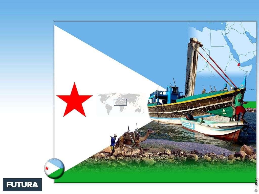 Drapeau : Djibouti
