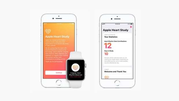 L'application Apple Heart Study affiche les alertes sur la montre ou le smartphone. © Apple