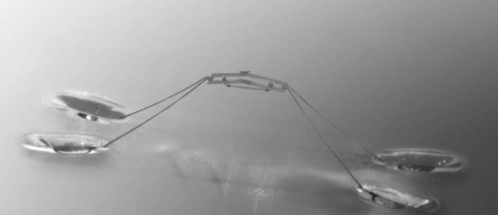 Le petit robot inspiré de l'araignée d'eau semble sommaire mais sa réalisation a été minutieuse et ses différents composants soigneusement dimensionnés. Ses longues pattes (5 cm) sont ici écartées alors qu'un ressort tend à les refermer comme une paire de ciseaux. Un petit collier empêche le mouvement. Dès qu'il est déplacé, les pattes se resserrent, soulevant violemment le corps du robot. Parce que la force est bien calculée, la tension superficielle de l'eau empêche les pattes de s'enfoncer et le robot est projeté vers le haut. © Seoul National University
