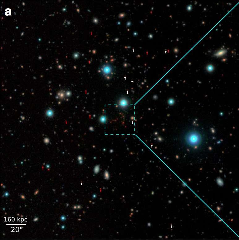 Chaque point sur l'image représente une galaxie avec ses centaines de milliards d'étoiles, les plus rouges sont aussi les plus lointaines. © CEA