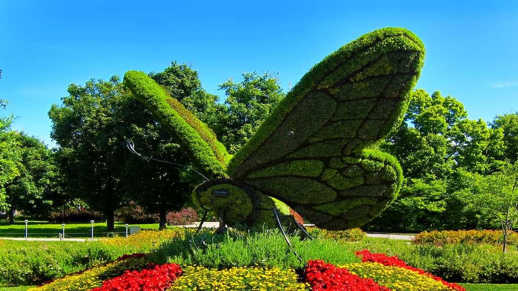 Le papillon de Comesse, première mosaïculture du monde