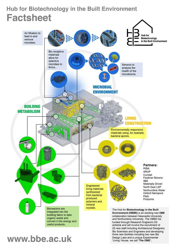 Le Hub for Biotechnology in the Built Environment (HBBE) réunira des architectes, des ingénieurs et des biologistes, en collaboration avec le monde de l'industrie.