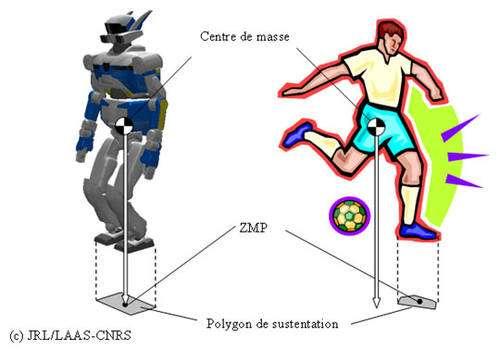 Le ZMP est à la base des mouvements dynamiques du robot HRP-2. © JRL/LAAS-CNRS