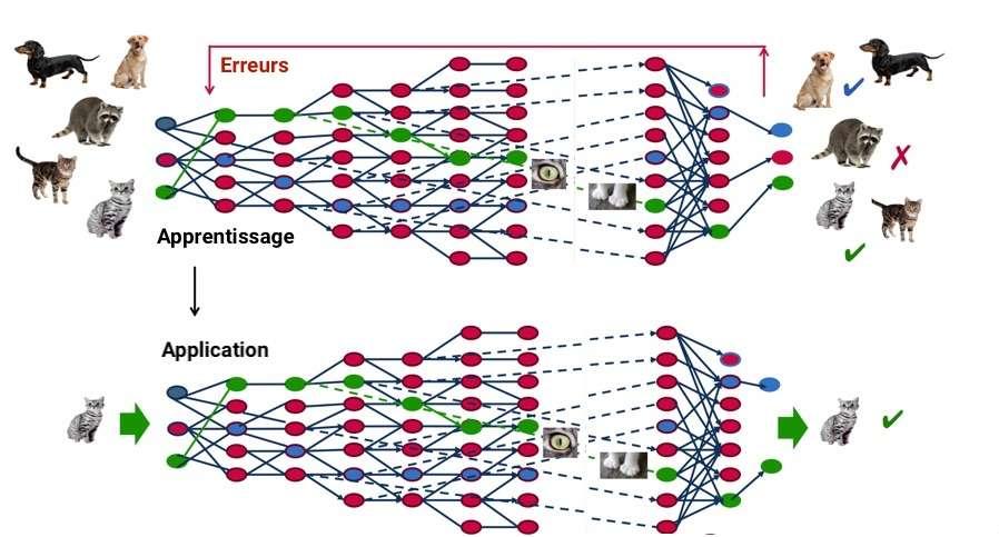 À travers un processus d'autoapprentissage, le deep Learning est capable d'identifier un chat sur une photo. À chaque couche du réseau neuronal correspond un aspect particulier de l'image. © MapR, C.D, Futura