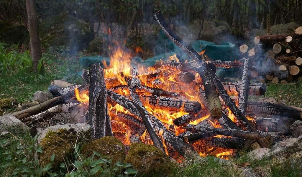 Feux de forêts, trafic routier, raffineries, industries, pulvérisations agricoles, aérosols, fumée de tabac ou encore combustion du bois dans les cheminées sont autant de sources d'émission de xylène dans l'atmosphère. © SeeSack, Pixabay, CC0 Creative Commons
