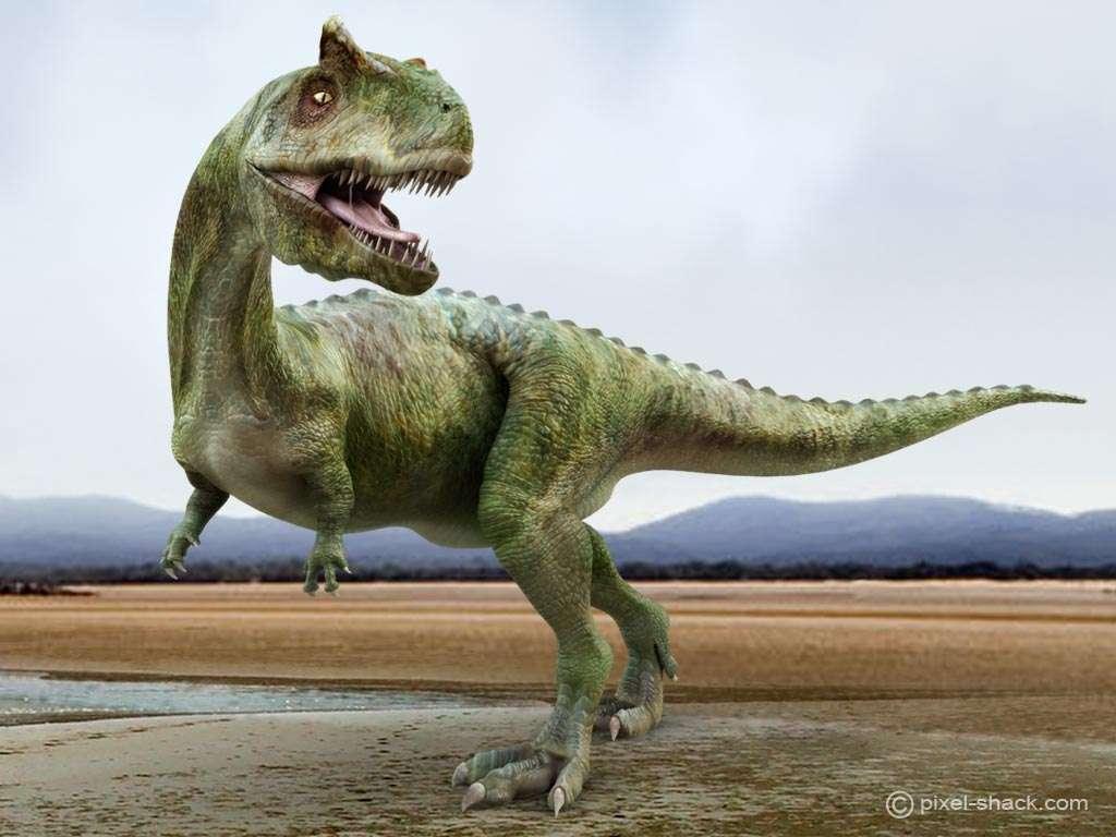 Le carnotaure, ou Carnotaurus