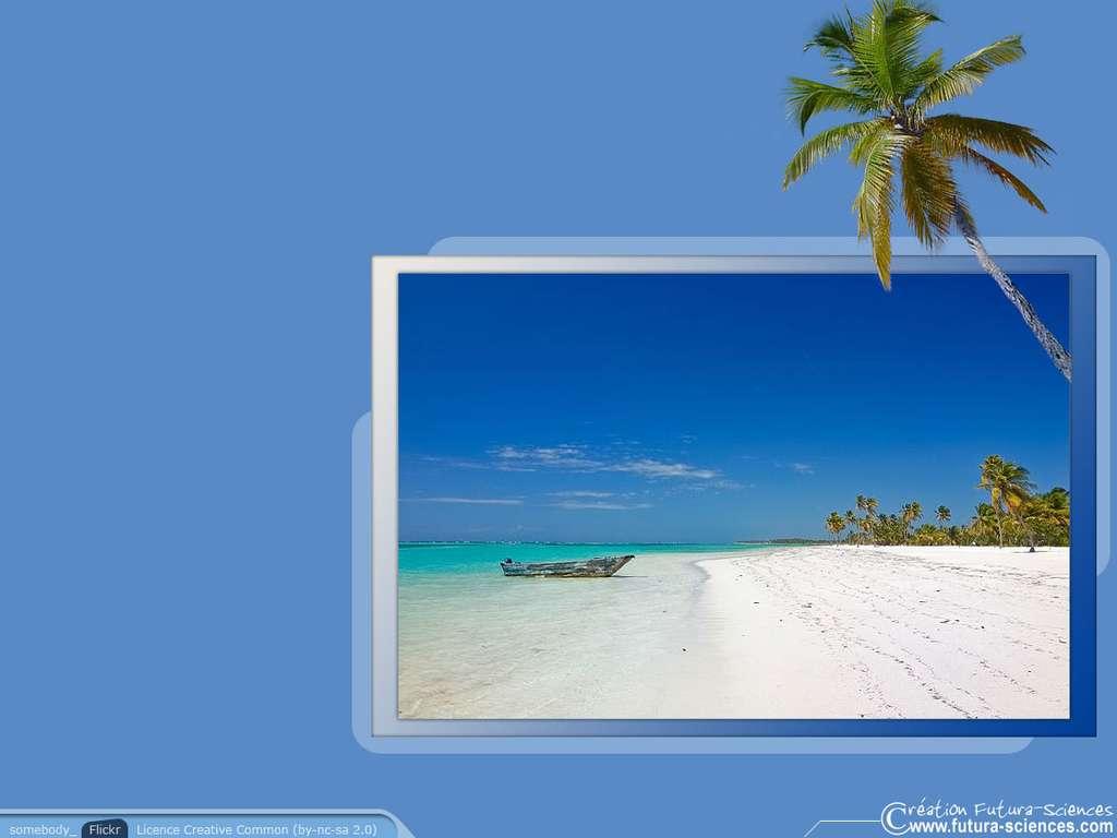 Rêve de sable blanc