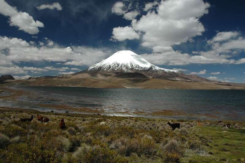 Volcan Parinacota Chili
