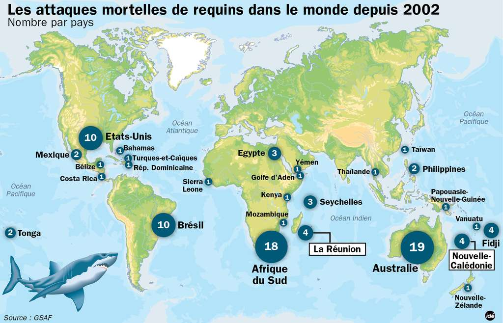 Les attaques mortelles de requins répertoriées dans le monde depuis 2002. Par comparaison, près de 100.000 personnes meurent par an à la suite de morsures occasionnées par des serpents. © Idé