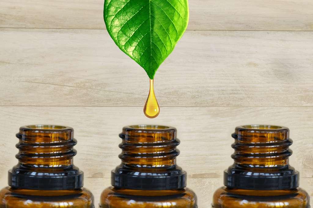 L'extraction et la fabrication d'huile essentielle n'a rien de « naturel ». © Adrian_ilie825, Fotolia
