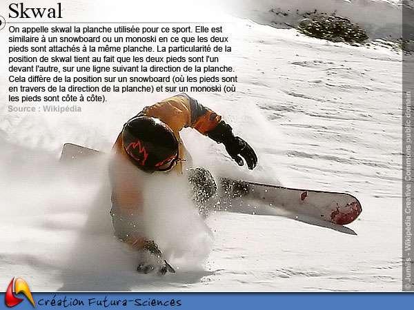Ski skwal