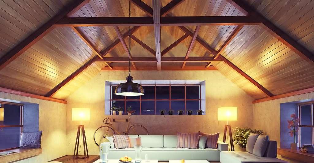 Une toiture isolée par l'extérieur offre un confort optimal en laissant sa poutraison apparente. © Victor Zastol'skiy, Fotolia