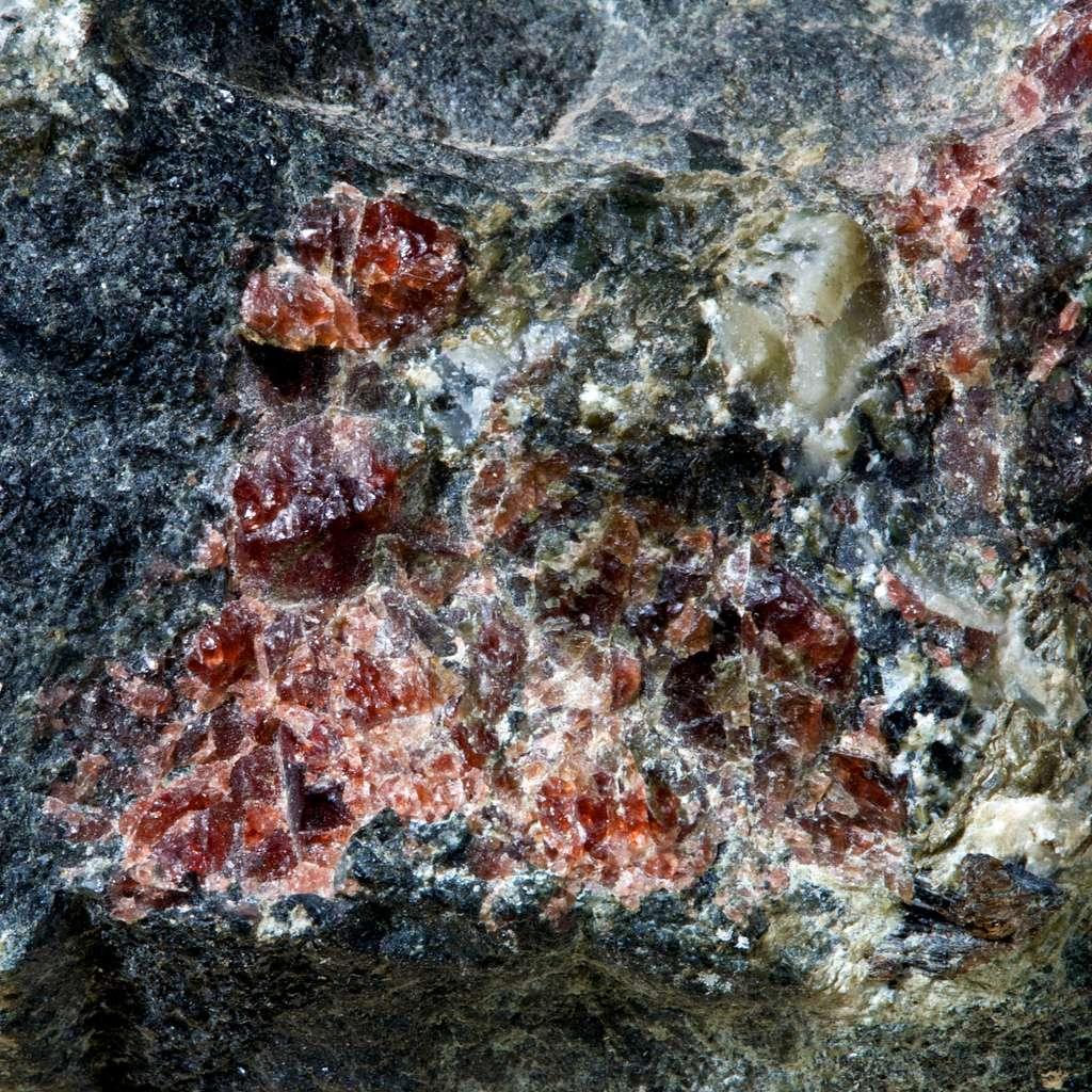 Au sud de Lüderitz, une partie de fond océanique, une ophiolite, est prise dans l'orogenèse et forme la montagne noire, basaltes de fonds marins métamorphisés en amphibolite avec grenats. Ici, une amphibolite avec grenats de Bjordammen, en Norvège, issue de la collection Keele. © Hypocentre, Flickr, CC by-nc-sa 2.0