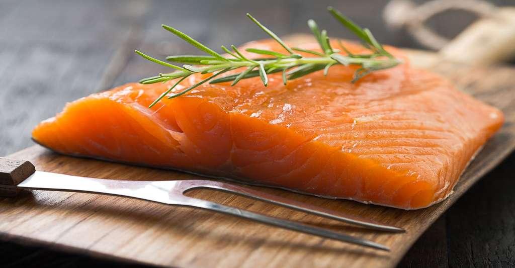 Quels sont les parasites des poissons ? Ici, du saumon. © Mateusz Gzik, Shutterstock