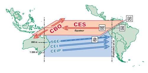 Vue schématique des courants de la couche de surface (en rouge) et de subsurface (en bleu) dans le Pacifique tropical. On distingue le Courant Equatorial Sud (CES) qui, lorsqu'il arrive sur le bord ouest (W) alimente les deux Courants de Bord Ouest (CBO) et le Sous Courant Equatorial (SCE). Ce dernier coule le long de la thermocline (trait bleu incliné) dans le sens opposé au Courant Equatorial Sud. Sous le Sous Courant Equatorial se trouvent le Courant Equatorial Intermédiaire (CEI) et le Courant Equatorial Intermédiaire Profond (CEIP) entre environ 300 et 1200 m de profondeur. Ces deux derniers courants (CEI et CEIP) se sont renversés entre octobre 1999 et avril 2000 pour des raisons encore inexpliquées. © IRD