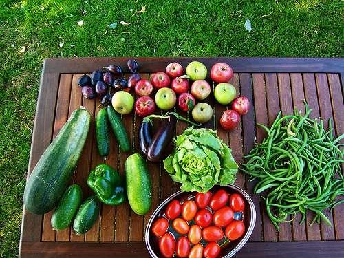 Les concombres, tomates et salades sont mis hors de cause. © Luc Legay, Flickr by-sa 2.0