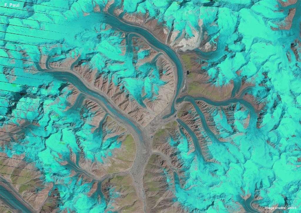 Les glaciers Panmah et Choktoi dans le massif Karakoram (Asie). On peut voir dans cette animation de 1,5 seconde réunissant 15 images prises par un satellite Landsat entre 1990 et 2015, les mouvements des glaciers et leurs interactions. Le gif animé est visible ici (7,7 Mo). © F. Paul, The Cryosphere, 2015 & USGS, Nasa