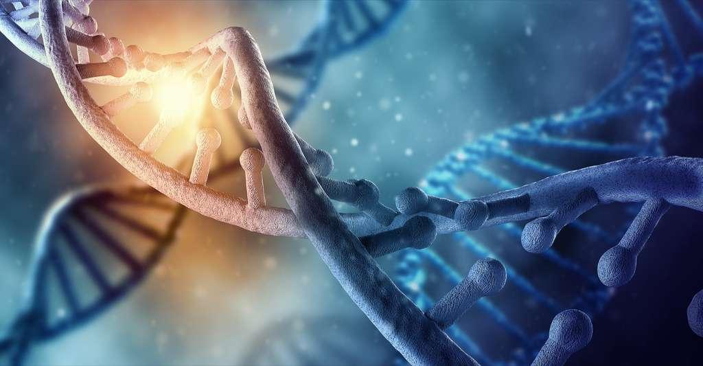 Les modifications épigénétiques, comme la méthylation des cytosines, ne touchent pas la séquence d'ADN mais influencent l'expression des gènes. © ESB Professional, Shutterstock