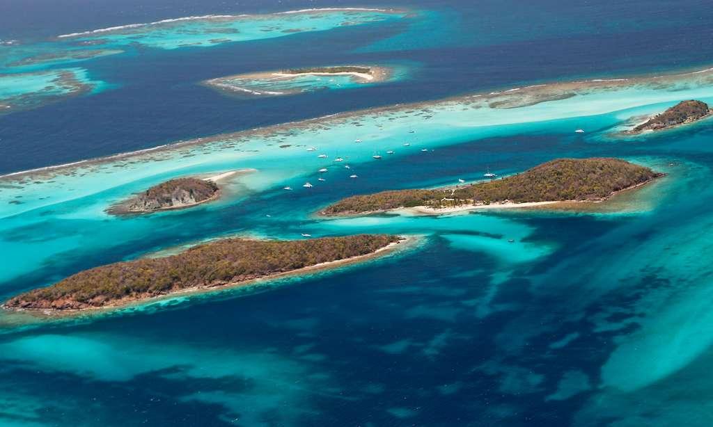 Tobago Cays et ses merveilleux récifs