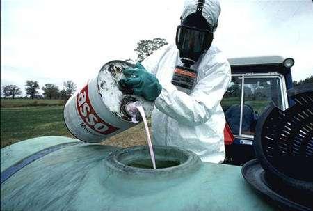 Les pesticides et autres polluants ne font pas bon ménage avec les pollinisateurs. © Wikipédia, DP