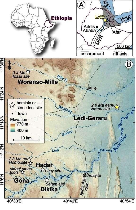 Ledi-Geraru est située à seulement 30 km d'Hadar, une région où l'on a trouvé des restes fossilisés d'une centaine d'Australopithecus afarensis. Les plus anciens outils en pierre connus sont datés d'environ 2,6 millions d'années et ils ont été trouvés à 40 km de Ledi-Geraru, près de Gona. © Erin Di Maggio