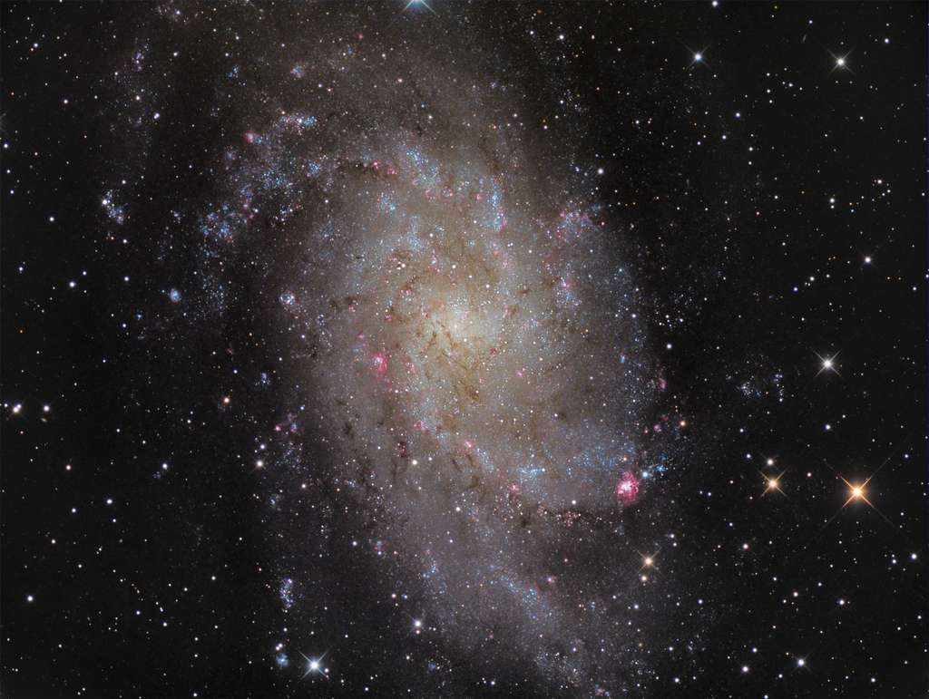 Sa majesté M 33, la galaxie du Triangle. © Manfred Konrad