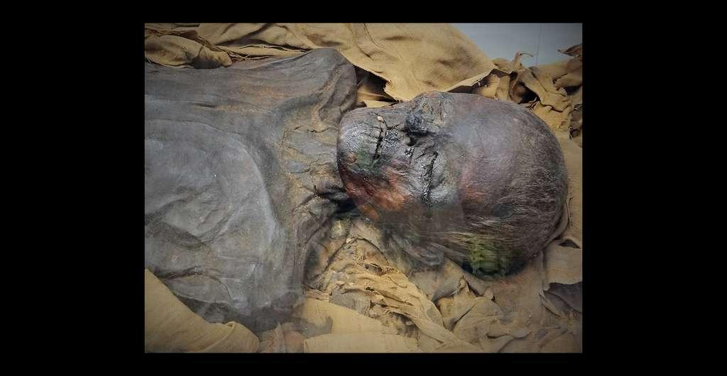 La datation au carbone 14 est très fiable, ici une momie égyptienne du British Museum. © Ibex73, Wikimedia commons, CC 4.0