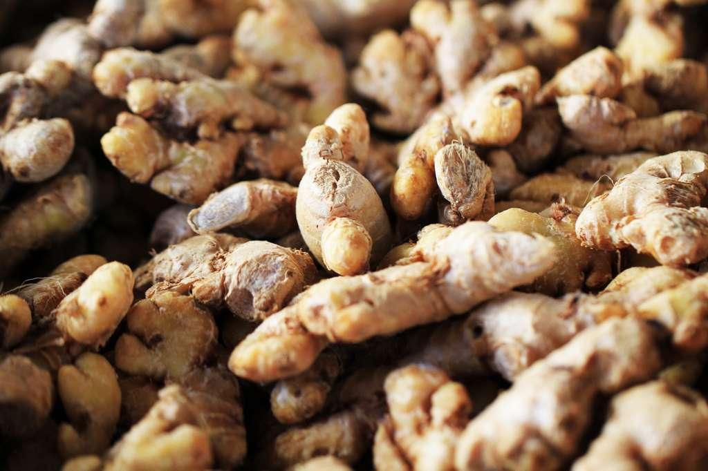 Le gingembre frais peut être replanté en pot pour une production à la maison. © jonnysek, Fotolia