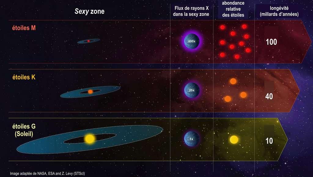 Cette infographie compare les caractéristiques de trois classes d'étoiles dans notre Galaxie : les étoiles semblables au soleil sont classées comme étoiles G ou naines jaunes ; les étoiles moins massives et plus froides que notre Soleil sont des naines K ou naines orange ; et des étoiles plus faibles et plus froides sont les naines M rouges. Le graphique compare les étoiles en fonction de plusieurs variables importantes. La longévité des étoiles M naines rouges peut dépasser 100 milliards d'années. Celle des naines orange peut aller de 15 à 45 milliards d'années. Celle de notre Soleil est d'environ 10 milliards d'années. Le flux de rayonnement stellaire capable de chauffer et d'éroder la haute atmosphère peut être 80 à 500 fois plus intense dans la zone habitable des naines M que dans celle du Soleil. Mais seulement 5 à 25 fois plus intense dans celle des naines K. © Nasa, ESA and Z. Levy (STScI), Franck Selsis