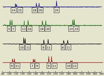 Le profil génétique est unique. © Cold Spring Harbor University