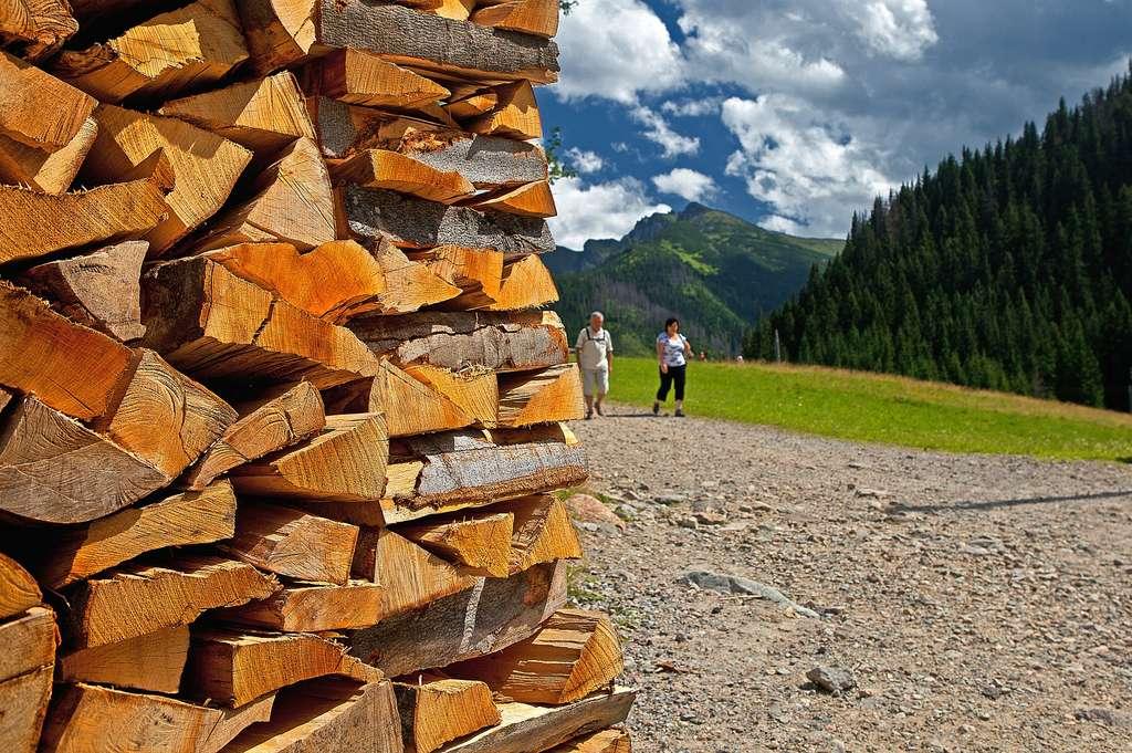 Pour chauffer une habitation, la bûche de bois traditionnelle est facile à se procurer et bon marché. © uruburos, Pixabay, DP