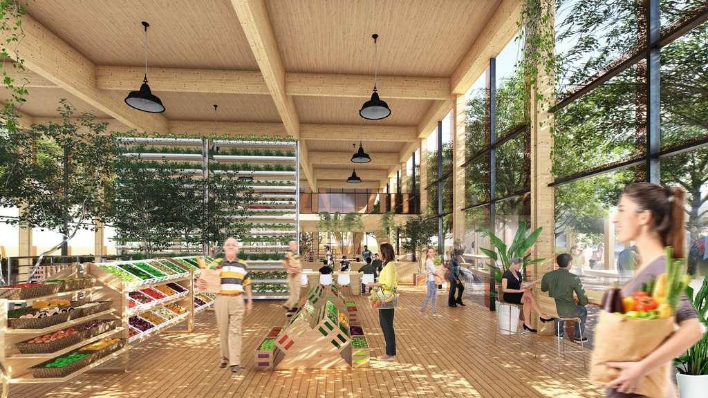 Les légumes cultivés dans les serres sont destinés à alimenter le marché local. © Guallart architects