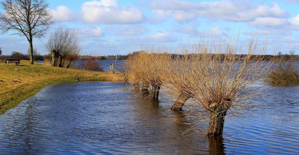 Quelles solutions pour lutter contre la pollution de l'eau ? Ici, des champs inondés. © Counselling, DP