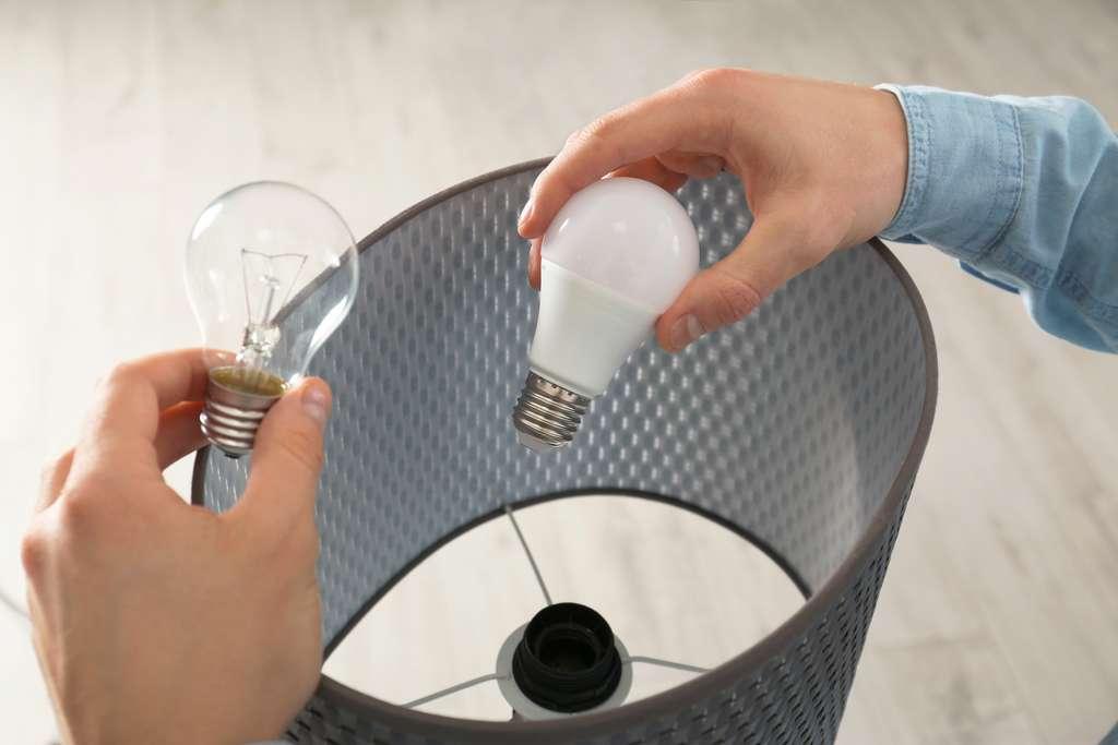 Installer des ampoules LED pour une meilleure consommation d'énergie. © New Africa, Adobe Stock