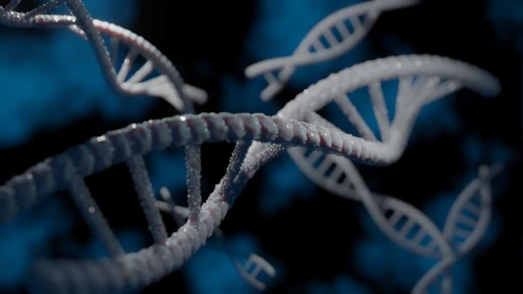 Modélisation 3D de l'ADN, réalisée avec le logiciel libre Blender. © Tim Tim, Wikimedia commons, CC 4.0
