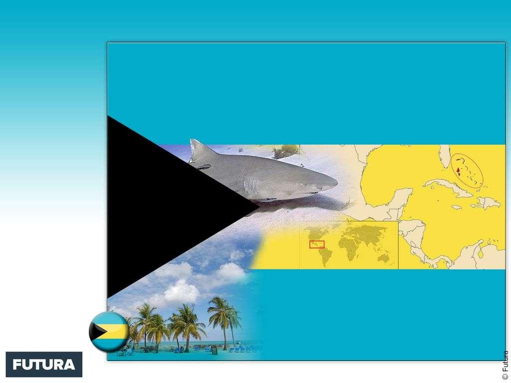 Drapeau : Bahamas